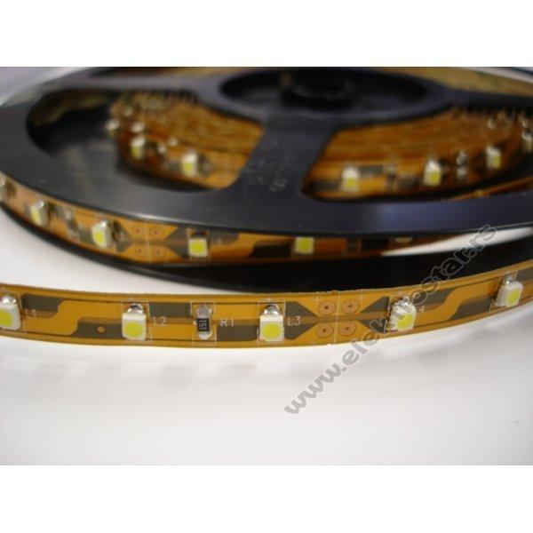 LED TRAKA 5m 300LED CW BELA 12V 4,8W/1m