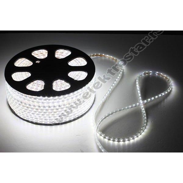 LED TRAKA CW 220V 3528 60LED/1m