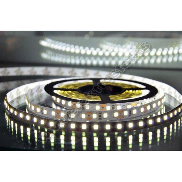 LED TRAKA CW2835 12V 600LED 9,6W